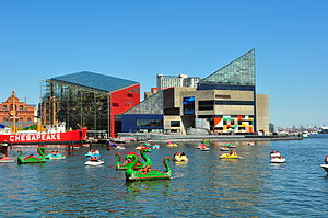 National Aquarium (Baltimore) - The National Aquarium (angular original building with glass pyramid top of 1981, rear right, and 2005 north extension to its left) lies near two of four historic museum / exhibit ships of the Baltimore Maritime Museum on Piers 3 and 4 in the Inner Harbor area of Baltimore, including World War II submarine USS ''Torsk'' and Lightship Chesapeake.