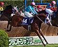 Bashi Ken10.jpg