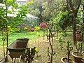 Beauty of Baldha Garden.jpg