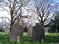 Begraafplaats Groenesteeg te Leiden.jpg
