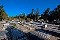 Beheshte Zahra Cemetery تصاویر بهشت زهرا تهران.jpg