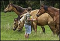 Ben feeding Lacey Creek horses-2 (22247249363).jpg