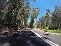 Benandarah NSW 2536, Australia - panoramio (8).jpg