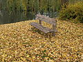 Bench autumn 03.JPG