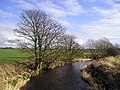 Bend in the River - geograph.org.uk - 125076.jpg