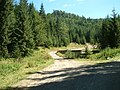 Biharfüred környékén - panoramio.jpg