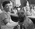 Billie Holiday and Mister, New York, N.Y., ca. June 1946 (William P. Gottlieb 04271) (cropped).jpg