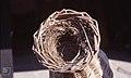 Bird's nest in St Fagans eel trap 1979 (37596947464).jpg