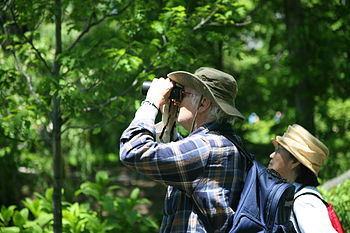 Birdwatchers in Central Park, New York City