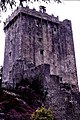 Blarney Castle - geograph.org.uk - 1495432.jpg