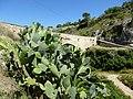 Bocairent - panoramio (33).jpg