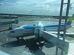 Boeing 787 UZ Airways.jpg
