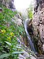 Bongan Wterfall آبشار بنگان - panoramio.jpg