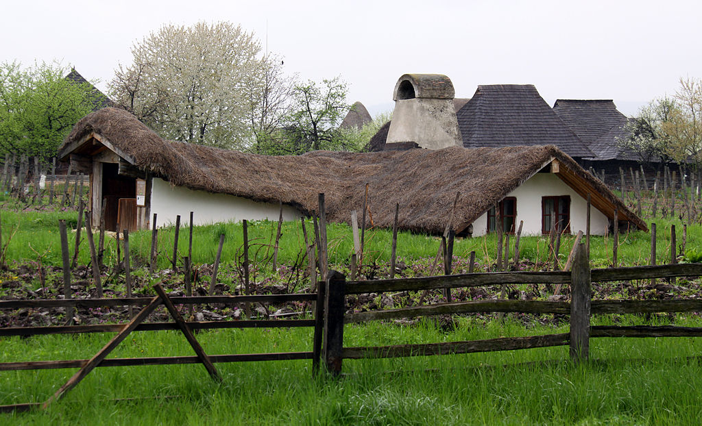 Wine and Fruit Growing Museum - Wallachia private car tour | Summer holiday in Romania ~ Bulgaria ~ Greece
