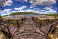 Bory Tucholskie, Jezioro Gacno Wielkie.jpg
