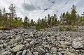 Boulder field on the side of Kivitunturi, Savukoski, Lapland, Finland, 2021 June.jpg