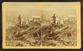 Bourdeau Family, Owl's Head Slide, Jefferson, N.H, from Robert N. Dennis collection of stereoscopic views 5.png