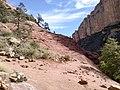 Boynton Canyon Trail, Sedona, Arizona - panoramio (82).jpg
