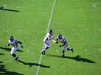 Chester Taylor - Taylor takes a handoff from Brad Johnson in 2006.