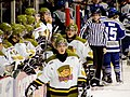 Brampton Battalion players 2008.jpg