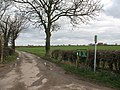 Bridleway and farm road at Catton - geograph.org.uk - 356954.jpg