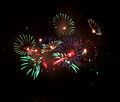 British Fireworks Championship 2009 09.jpg