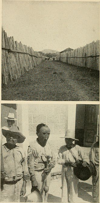 Lenca - Lenca Indians, photographed in 1901. Top: Typical Intibucá fences. Bottom: Men wearing a gourd mask at dance of festival of the patron saint of the town. M. Rios first man with large hat uncovered face.