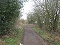Byway to Whatsole Street - geograph.org.uk - 1767065.jpg