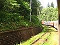 Călatorie cu trenul - panoramio.jpg