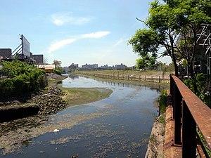 Coney Island Creek - Shell Road terminus of Coney Island Creek