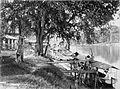 COLLECTIE TROPENMUSEUM Boten liggen aan de oever van de rivier bij de tabaksplantage Tandjoengpoera. TMnr 60001566.jpg