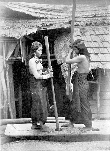 https://upload.wikimedia.org/wikipedia/commons/thumb/9/9c/COLLECTIE_TROPENMUSEUM_Twee_Kenja_Dajak_vrouwen_stampen_voedsel_in_een_kampong_op_Borneo_TMnr_60043384.jpg/436px-COLLECTIE_TROPENMUSEUM_Twee_Kenja_Dajak_vrouwen_stampen_voedsel_in_een_kampong_op_Borneo_TMnr_60043384.jpg