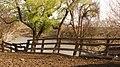 CORRALES - panoramio.jpg