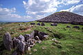 Cairns S(?) and T, Loughcrew.jpg