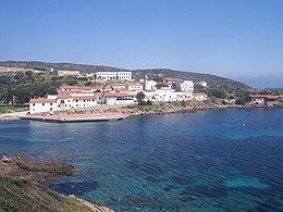 Cala d'Oliva in Asinara.