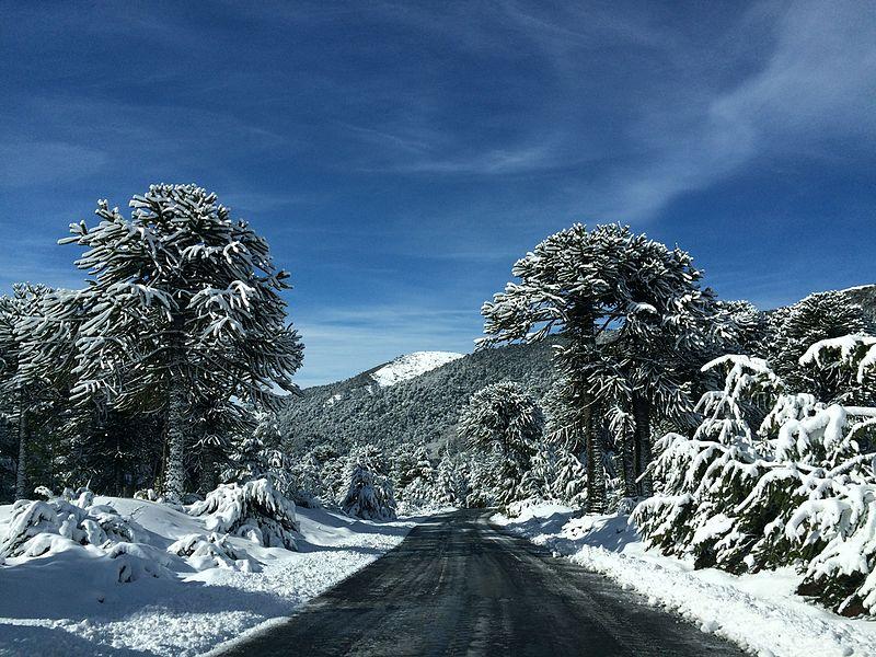 Esqui para iniciante no Chile