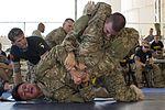 Camp Lemonnier Combatives Tournament 170113-F-QF982-0823.jpg