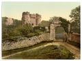 Carisbrocke (i.e., Carisbrooke), the castle, Isle of Wight, England-LCCN2002708234.tif