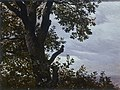 Carl Gustav Carus - Baumstudie mit Wolken (1830).jpg