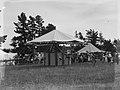 Carousel ride at fair (AM 79498-1).jpg