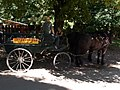 Carriage rides available in Szalajka Valley, Szilvásvárad, 2016 Hungary.jpg