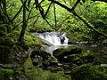 Cascada en el rio Latarma.JPG