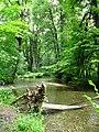 Cascades du Hérisson (6045035057).jpg