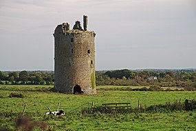 Castles of Munster, Knockagh, Tipperary - geograph.org.uk - 1542678.jpg
