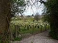 Cemetery in Willingdon - geograph.org.uk - 1834299.jpg