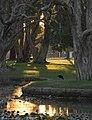 Centennial Park light 001.jpg