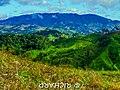 Cerro EL TORO, Parque Nacional Cerro Saslaya, vista desde el Cerro Las Nubes, Guayabo, Resbalón, Siuna, R.A.C.C.N. - panoramio.jpg