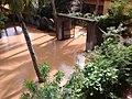Chandakuda, Odisha 755006, India - panoramio (10).jpg