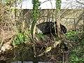 Chard Canal Thornfalcon.jpg