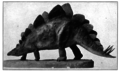 Charles R. Knight Stegosaurus model.png